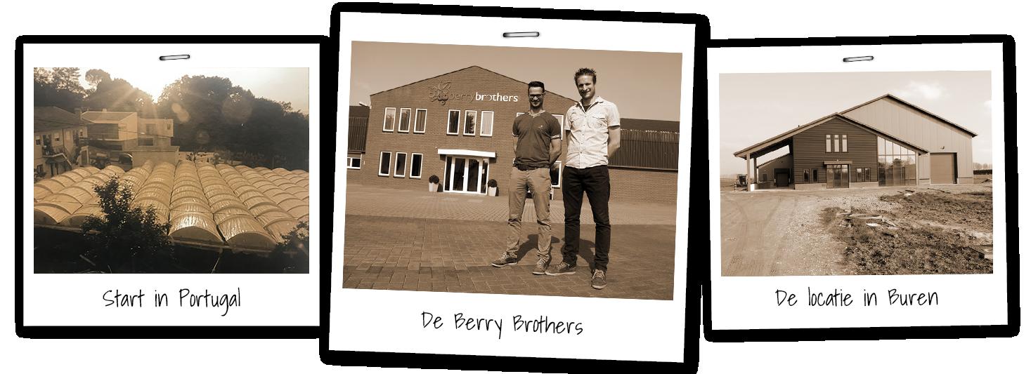 Overzicht van de geschiedenis van familiebedrijf Berrybrothers