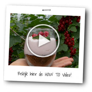 How to video cheesecake